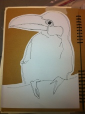 A continuous line drawing of the Toucan bird in fine liner